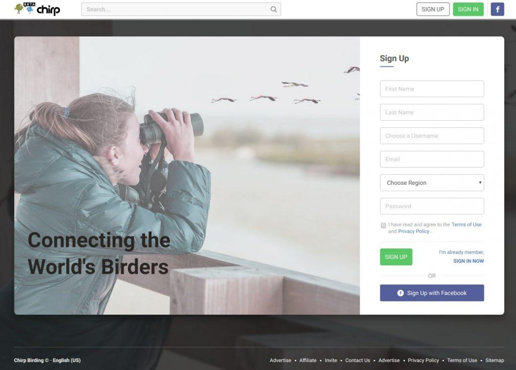 Recent Works - Chirp Birding
